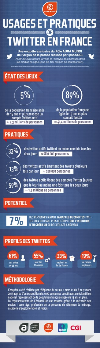 Infographie Etude Twitter en France - 2013